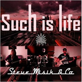 Steve Misik & Co. - Such is life